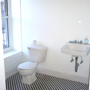 2nd bathroom  with shower in loft apartment park slope brooklyn 11215 for rent